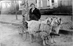 Catherine Bliss Enslow and Mary Enslow with goat cart, 1914