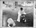 unidentified Enslow woman, dogs
