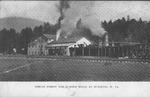 Spruce forest & Lumber Mills at Dunlevie, W.Va.