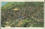 Aeroplane View Showing Moundsville,WVa