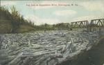 Log jam on the Guyandotte river, Huntington, W. Va., undated.