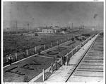 Huntington & Big Sandy RR yard engine #284, ca. 1890