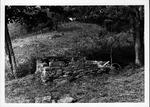 Henderson farm cellar at Rock Camp, W.Va., picture ca. 1980