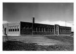 Ona school,1951