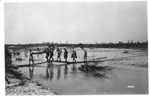 WWI: After the battle on the Piave, its wounded and dead, Aug. 1918