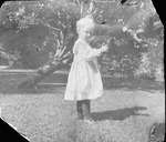Alfred Atkins, 2 years old