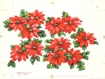 Poinsettias and holly