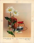 Camera, radio, and daisies