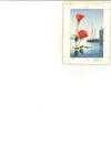 Roses and sailboats