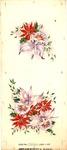 Poinsettia, mistletoe, and orchids