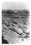 WWII Pacific Theater, combat photo: unexploded bombs