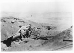 WWII Pacific Theater, combat photo: wrecked airplane
