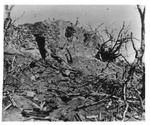 WWII Pacific Theater, combat photo: destroyed Japanese pillbox by Earl F. Dickinson
