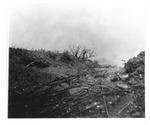 WWII Pacific Theater, combat photo: An island battlefield by Earl F. Dickinson