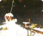 Victor Animatograph lantern slide: Toys Under Christmas Tree