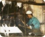 Victor Animatograph lantern slide: Village Weaver, Palestine
