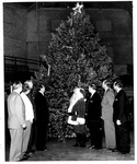 Lighting Christmas tree at the Memorial Field House, Dec. 18, 1954