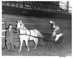 Santa arriving at Memorial Field House on horse-drawn sleigh, ca. 1950's
