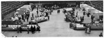 Flower Show, Memorial Field House, Huntington,WVa,ca. 1950's, panoramic view
