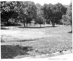 Meadows Elementary School playground, Huntington,WVa, 1951