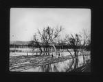 Rafting logs on 12 Pole Creek, Wayne County, 1906