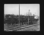 Camden Park trestle, 1906