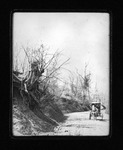20th Street Hill near Spring Hill Cemetery, Huntington, W.Va., 1906
