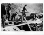 At Warren Delano's W.Va. coal mine, June 1908,