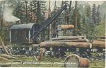 Log loader on the C&I Railroad, near Elkins,W.Va., 1910