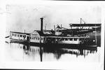 Steam packet boat Katydid, ca. 1880