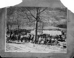 Sawmill operation at Poppa, Wayne County, W.Va., Oct. 1900