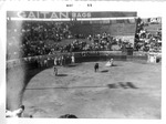 Spanish bull fight, May 1955