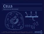 Cells: Molecules and Mechanisms