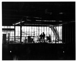 Workers at the construction of the Cam Henderson Center
