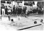 Water polo match between Alpha Chi Omega and Phi Mu