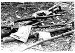 Debris from MU plane crash, Nov. 1970