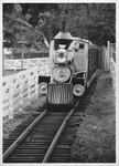 Train ride at Camden Park, Summer 1975