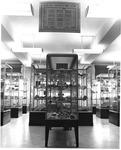 Geology Museum in MU Science Building, ca. 1970's,