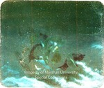 Christ Stilling the Sea