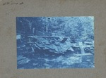 Unidentified location, wood pile