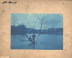 Unidentified location, two men in a tree, high water