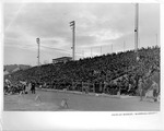 Fairfiled Stadium, West Stand,11/19/1936 by Moseley