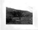 Ritter Park Rose Garden, Huntington, W.Va., 1935