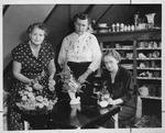 Huntington Woman's Club Garden Booth, Nov. 1956